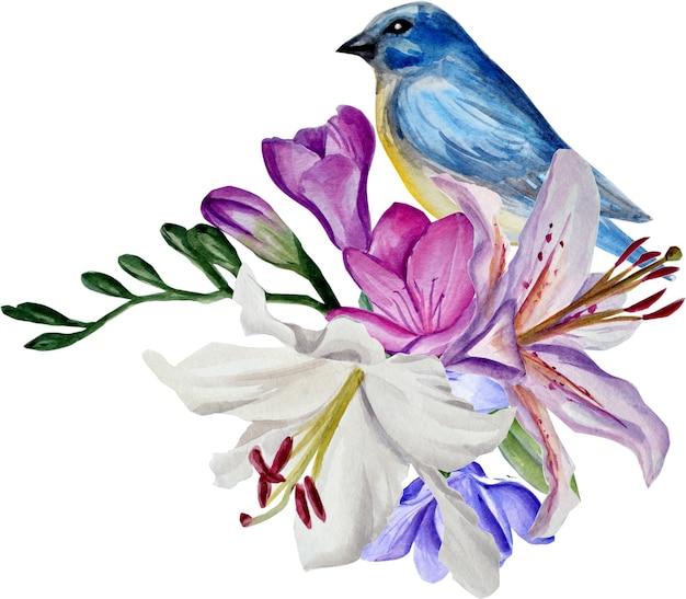 Lírios e frésias aquarela, pássaro azul, ilustração de mão