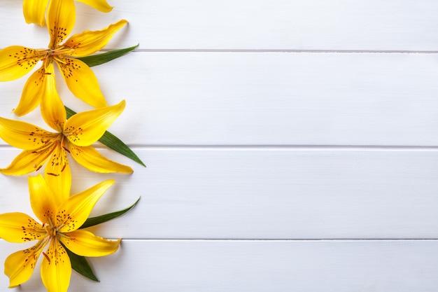 Lírios grandes flores amarelas