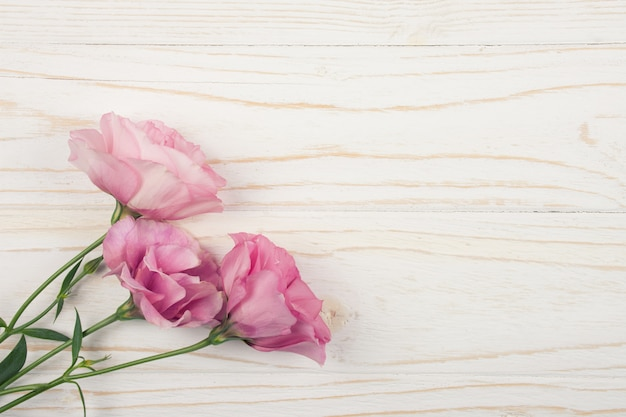 Lisianthus rosa (eustoma) flores sobre fundo de madeira