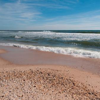 Litoral, ao longo, a, Hamptons, litoral