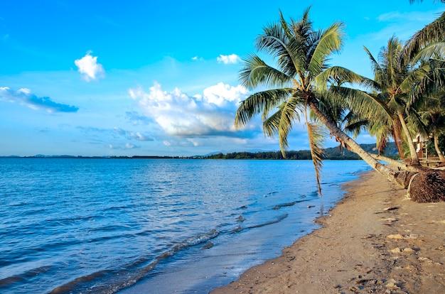 Litoral da ilha de bornéu