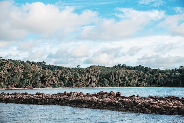 Litoral e pedra no mar.