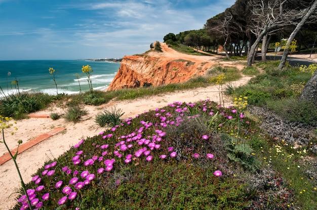 Litoral em ohos de aqua, sul de portugal
