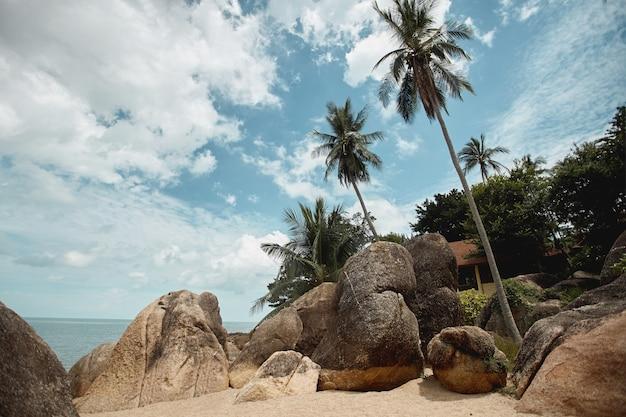 Litoral tropical com coqueiros, pedras enormes e areia dourada, vista em perspectiva. conceito de viagens de verão