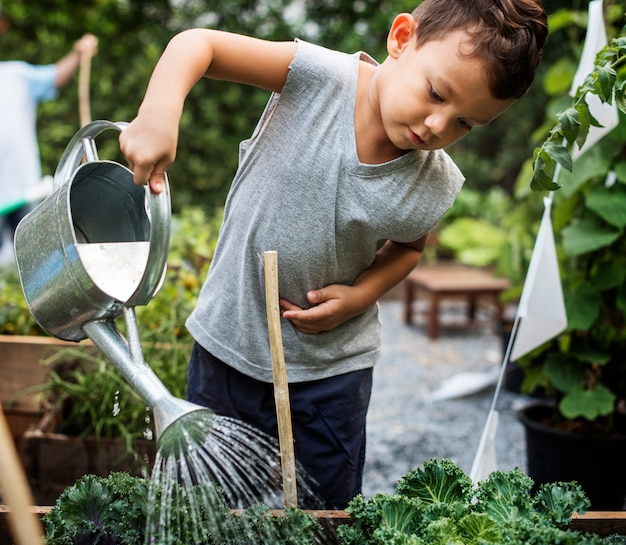 Little boy molhando vegetais na fazenda da escola