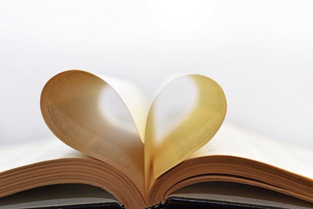 Livro aberto com folhas de forma de coração.