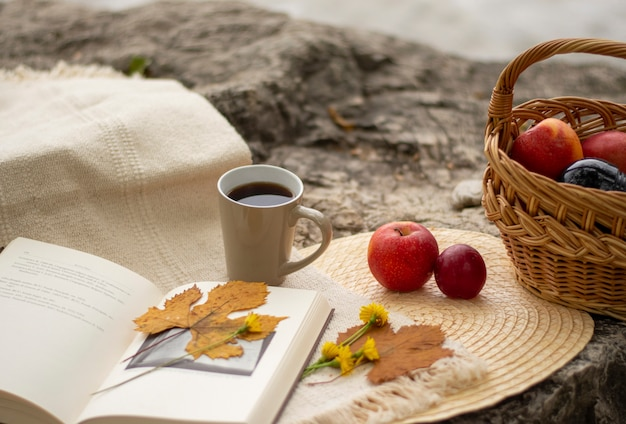 Livro aberto com uma folha amarela e uma flor, uma cesta com maçãs e um bule com chá em uma pedra maior, no fundo do lago