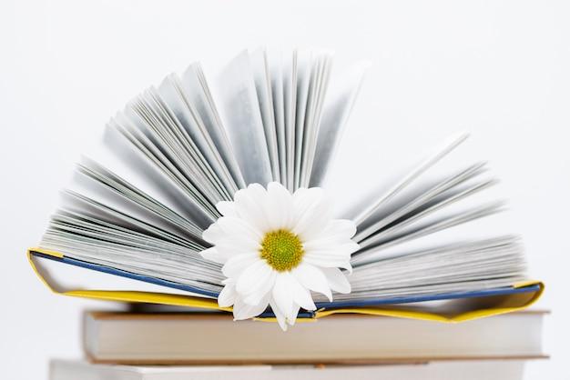 Livro aberto de alto ângulo com flor