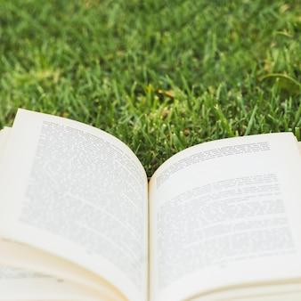 Livro aberto no prado verde