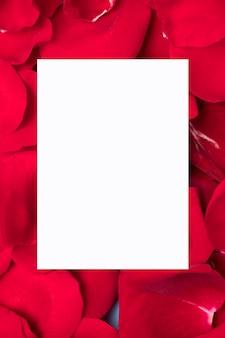 Livro branco no espaço de cópia de pétalas de rosa vermelha