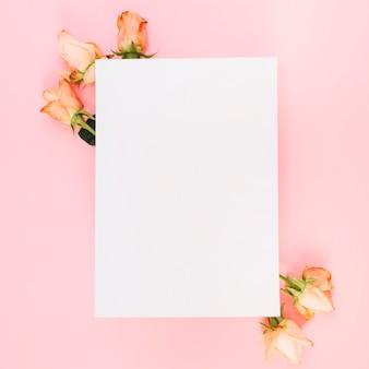 Livro branco sobre as rosas contra fundo rosa