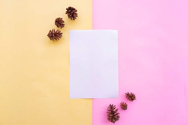 Livro branco sobre fundo de papel duas cores pastel rosa e amarelo com decoração de flor de fruta de árvore de abeto. cartão de visitas. cartão de visita, livro branco