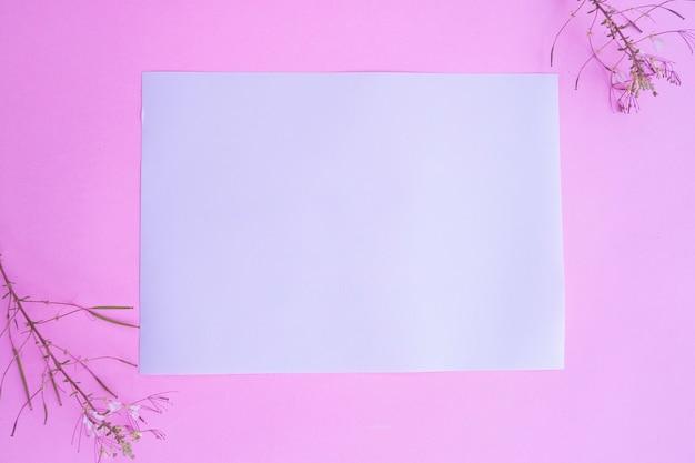 Livro branco sobre fundo rosa pastel com decoração floral. cartão de visitas. cartão de visita, livro branco. modelos de papel. fundo de cor pastel