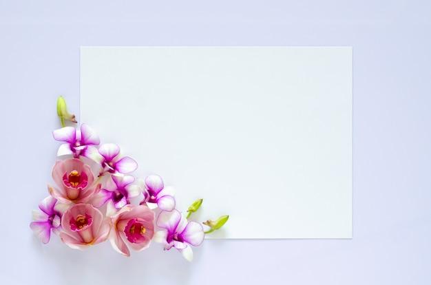 Livro branco vazio para texto com flor de orquídeas em fundo roxo pastel.