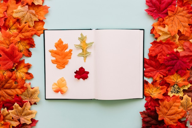 Livro com folhas de outono dentro