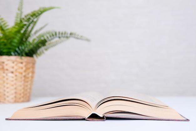 Livro de capa dura aberto e uma planta em um vaso em uma mesa branca com espaço de cópia.