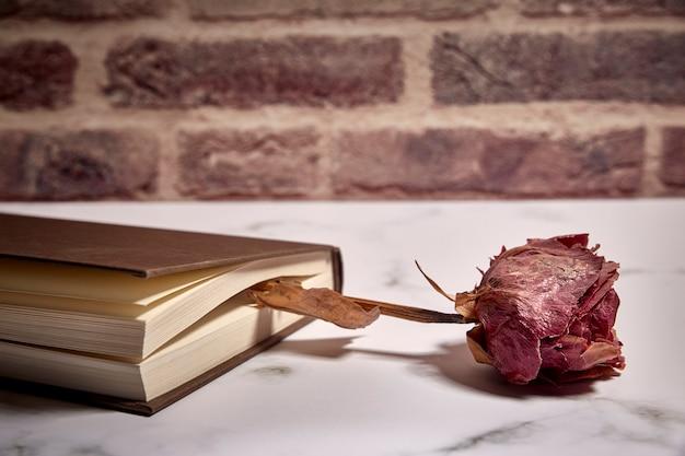 Livro fechado com uma rosa seca entre as folhas