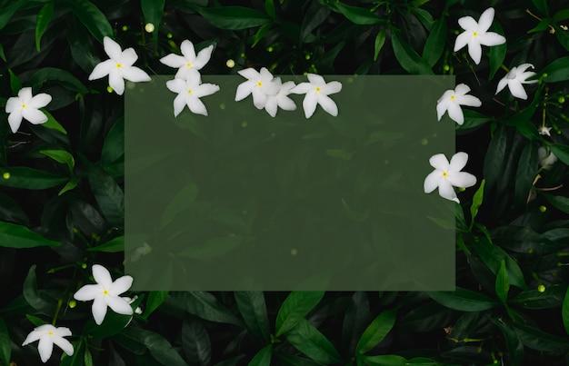 Livro verde sobre folhas com flores brancas