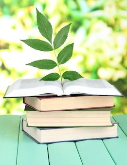Livros com uma planta na mesa em uma superfície brilhante