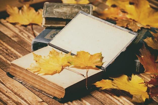 Livros e folhas de outono