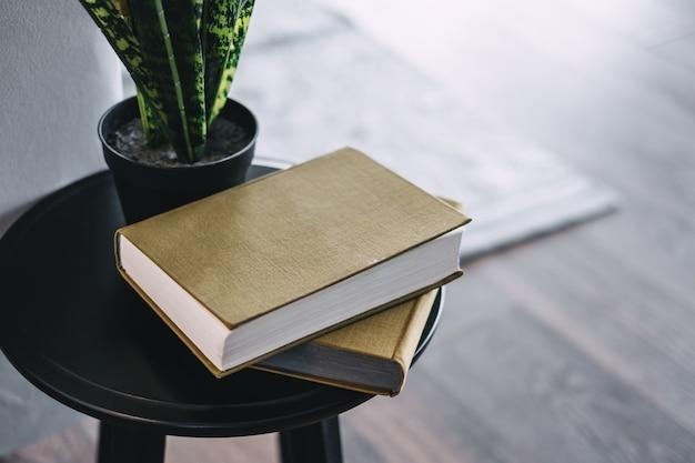 Livros e uma flor verde em uma panela sobre uma mesa de centro.