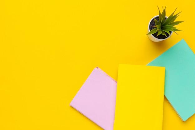 Livros em um amarelo