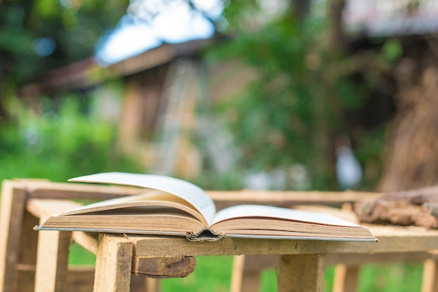 Livros na grama