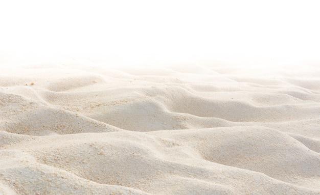 Lixe a natureza na praia no branco como o fundo.