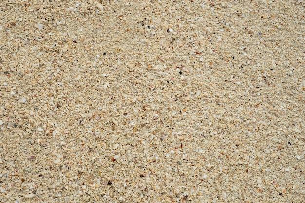 Lixe o fundo da textura, coral quebrado dos shell pequenos, areia natural no fim da praia acima.