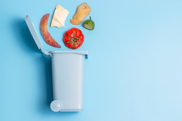 Lixo orgânico e lata de lixo, o conceito de triagem de lixo, espaço de cópia