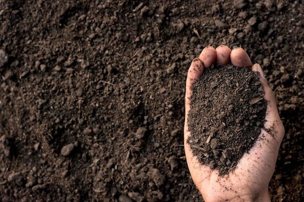 Loam nas mãos dos agricultores.