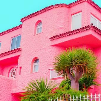 Localização de doces rosa tropical. plantas no conceito-de-rosa. vibrações de viagens. ilhas canárias