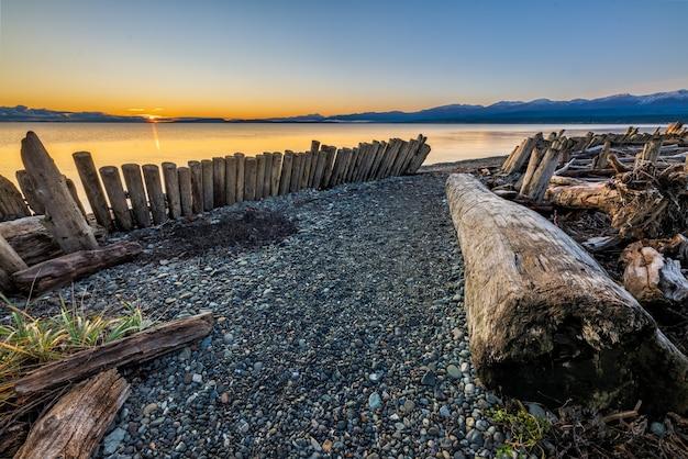Logs de madeira marrom na areia cinza durante o pôr do sol