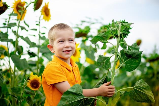 Loiro menino feliz sentado em um campo com girassóis no verão