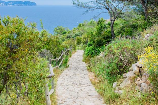 Longa estrada de pedra até a montanha entre belos arbustos verdes e árvores.