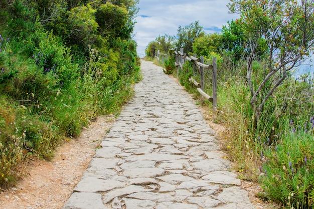 Longa estrada de pedra montanha acima entre lindos arbustos verdes e árvores.