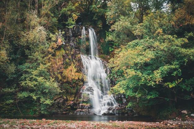 Longa exposição de uma cachoeira em uma floresta colorida