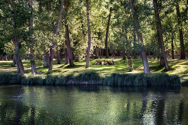 Longe, você pode ver um grupo de pessoas sentadas na natureza, perto do rio.