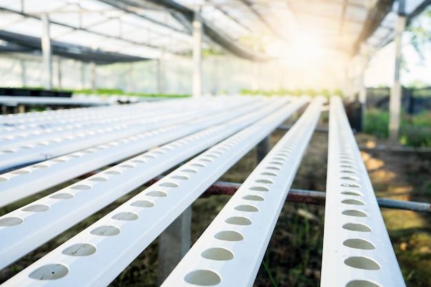 Lotes crescentes vegetais orgânicos. industrial