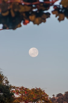 Lua cheia no rio de janeiro, brasil.
