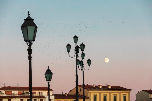 Lua cheia, telhados de edifícios, lanternas e um bando de melros ao pôr do sol em pisa.