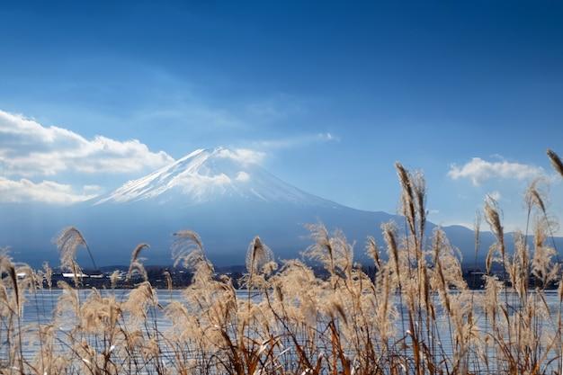 Lugar bonito ao redor do lago kawaguchi com o monte fuji em fundo