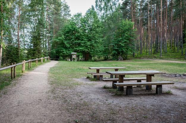 Lugar do piquenique na floresta com tabelas e bancos em um trajeto de passeio ao lado da rocha de sietiniezis. parque nacional de gauja. letônia. báltico.