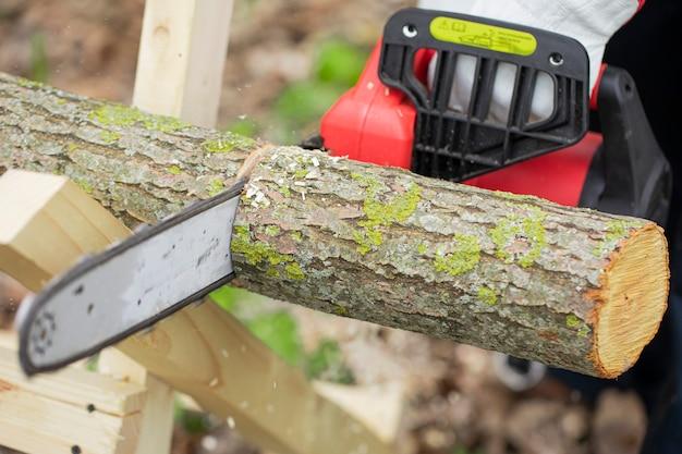 Lumberman em luvas trabalha com motosserra e serrando uma árvore na floresta