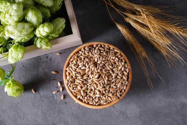 Lúpulo e ramos de trigo em um espaço cinza, vista superior.