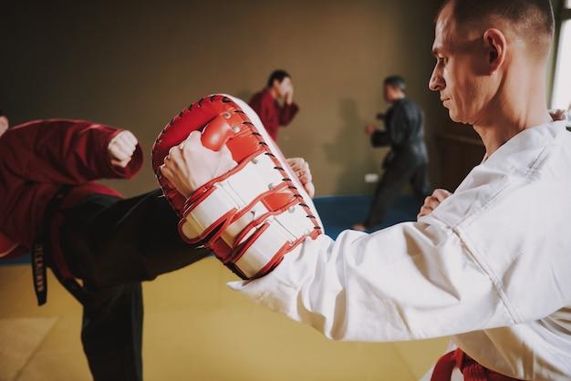 Lutadores de artes marciais em cores diferentes.