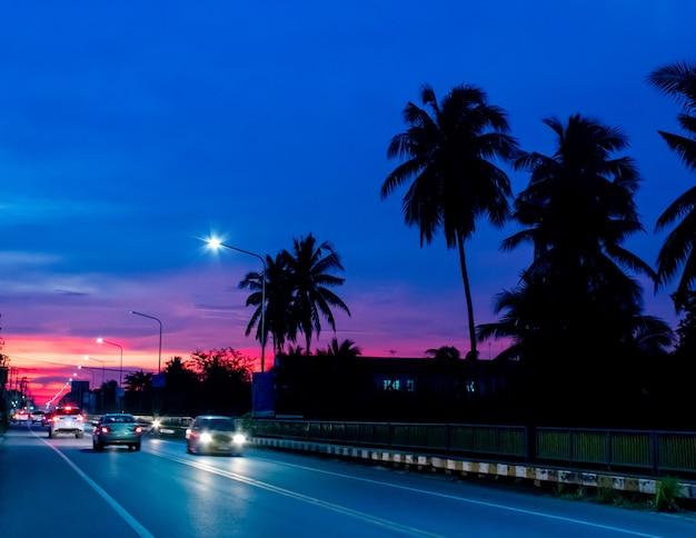 Luz do por do sol atrás dos coqueiros e da estrada.