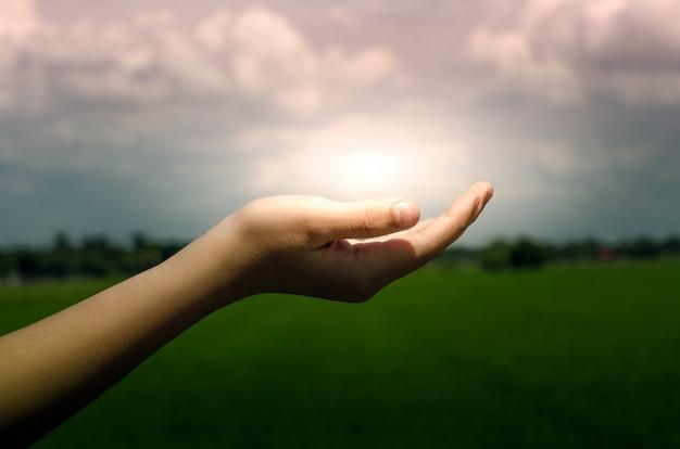 Luz na mão humana na natureza