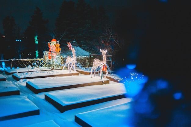 Luzes de cervo acesas no pátio à noite