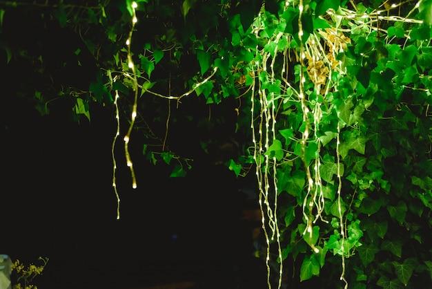 Luzes led decorando uma árvore à noite para criar uma atmosfera romântica em um jantar.